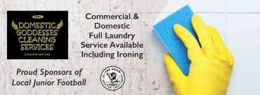 Domestic Goddesses Cleaning Services