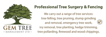 Gem Tree Management Ltd