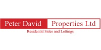 Peter David Properties